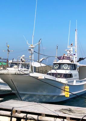 魚釣りガイド02